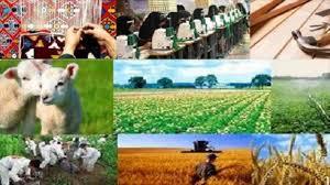 خبرهای تازه از توقف وام اشتغال روستایی