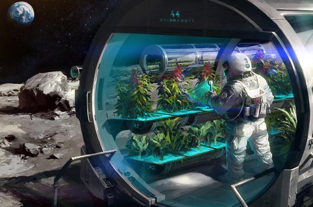 پرورش گیاه در فضا با خاک مصنوعی