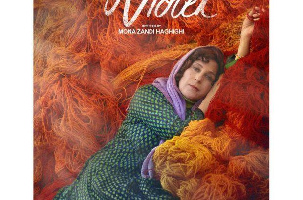 دو جایزه برای «بنفشه افریقایی» در جشنواره وزول