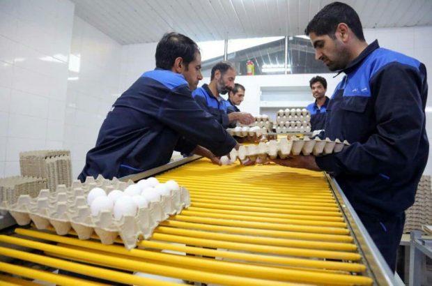 ایجاد ۲۲۹ هزار شغل بنیاد برکت از طریق مشارکت اقتصادی