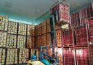 رونق صادرات محصولات کشاورزی با حمایت بنیاد برکت