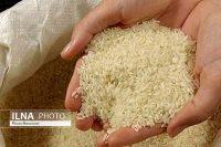 واردات برنج پاکستانی و هندی کاهش یافت