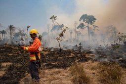 آتش سوزی جنگل های برزیل