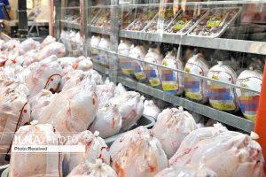 ممنوعیت صادرات مرغ تا اطلاع ثانوی تصویب شد
