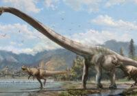 کشف نمونههایی از دایناسورها در شیلی